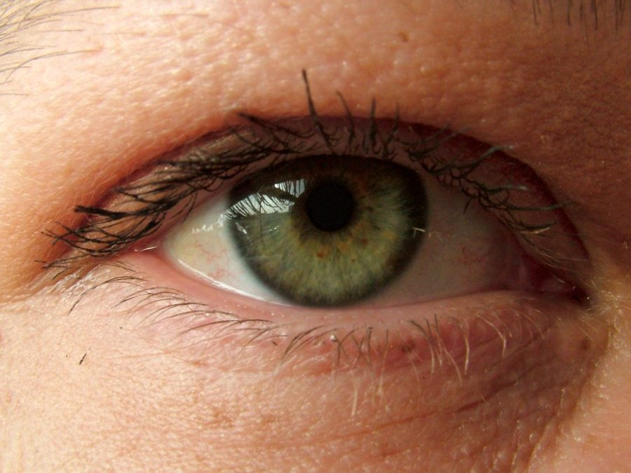 Eye Tracking Technology and UX Design: Questions to Ask